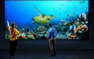 Video Wall vs Projection Barco Video Wall